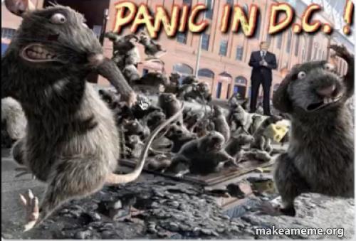 Panic In DC | Make a Meme