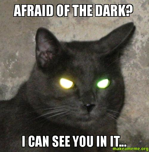 you scared meme - photo #24
