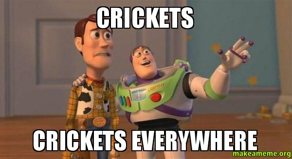 CRICKETS CRICKETS EVERYWHERE - | Make a Meme