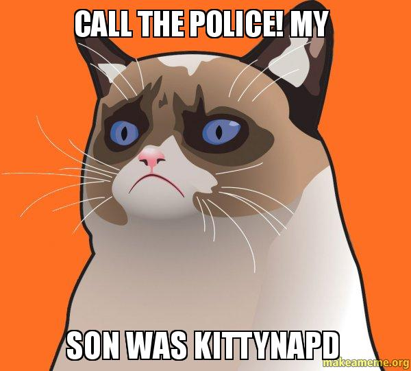 Call The Police My Son Was KiTtynapD