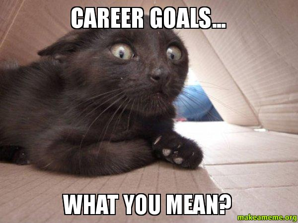 Career goals What career goals what you mean? make a meme