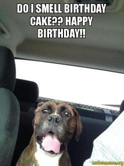 Happy Birthday Meme Do I Smell Cake