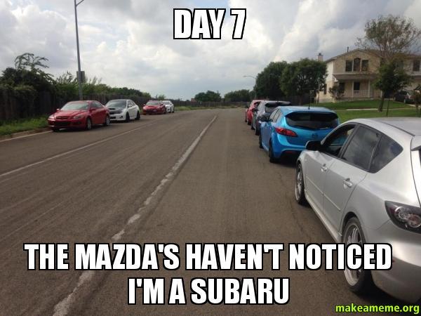Subaru Memes – Wonderful Image Gallery