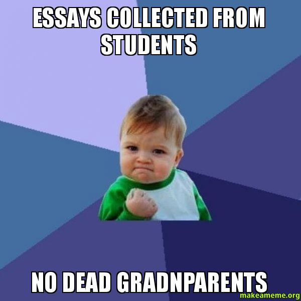 essays from students