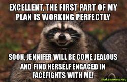 Evil Plotting Raccoon meme
