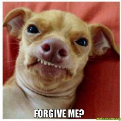 Forgive me? -   Make a Meme