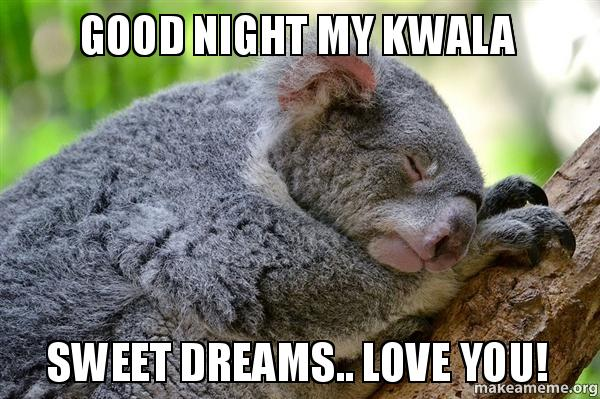 Good night my 4cxoi8 good night my kwala sweet dreams love you! make a meme