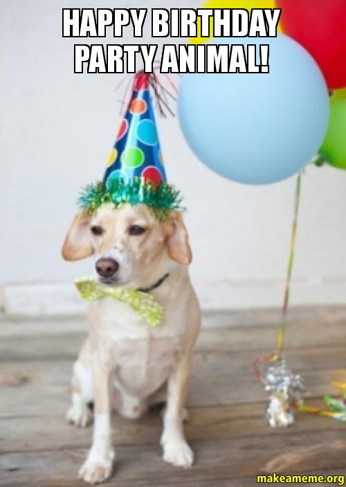 Happy Birthday party happy birthday party animal! make a meme