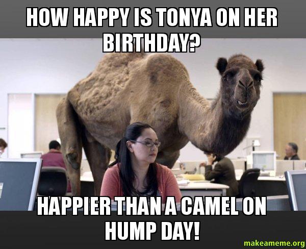 Pyt birthday card meme generator hey tonya happy birthday you p y t