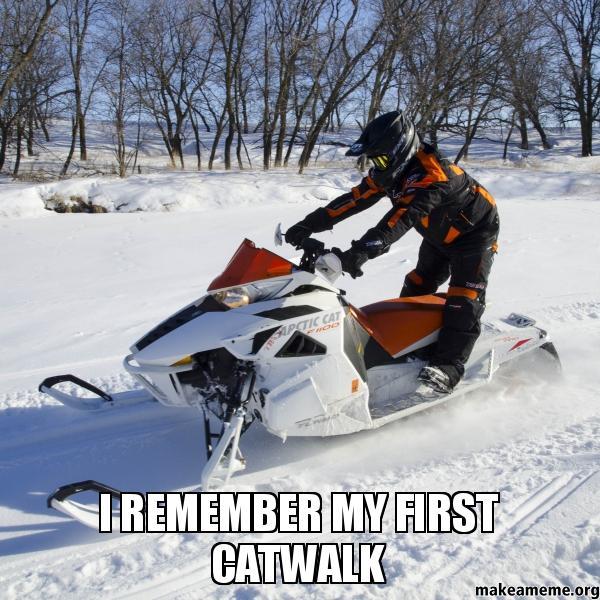 Arctic Cat Sayings