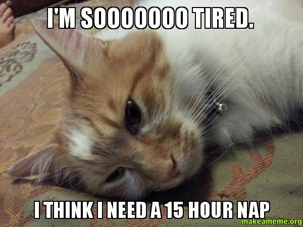 I'm sooooooo tired. I think I need a 15 hour nap -   Make