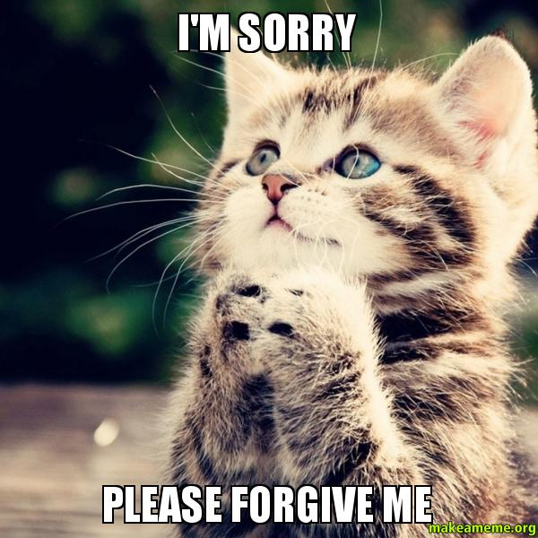 Funny I M Sorry Meme : I m sorry please forgive me make a meme