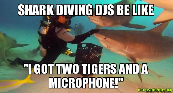 """Shark Diving DJs be like """"I Got Two Tigers and a ..."""
