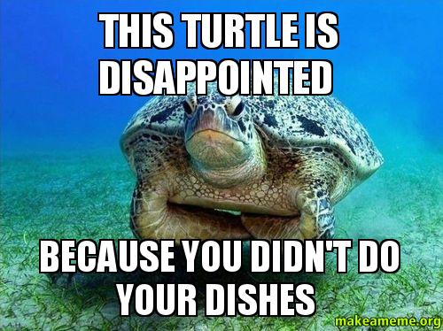 Disappointed Turtle Meme This Turtle is Disappointed