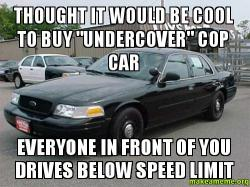 Thought It Would Be Cool To Buy Quot Undercover Quot Cop Car