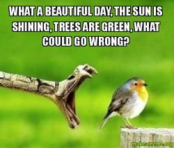 What a beautiful day the sun is shining trees are green for What make a beautiful