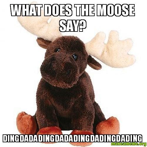 What Does The Moose Say? Dingdadadingdadadingdadingdading