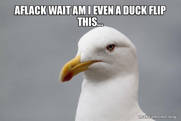 Stuff That Didn't Happen Seagull meme