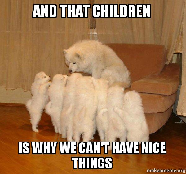 Image result for this is why we can't have nice things meme