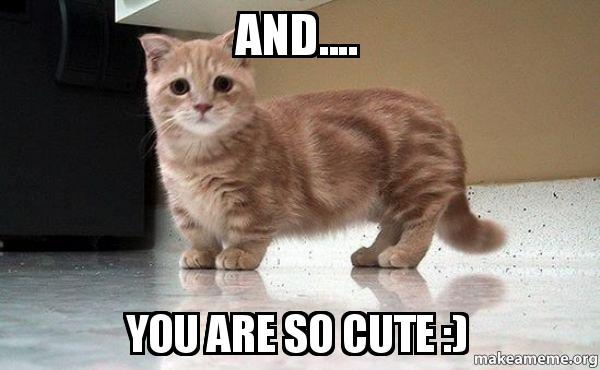 And.... You are so cut...