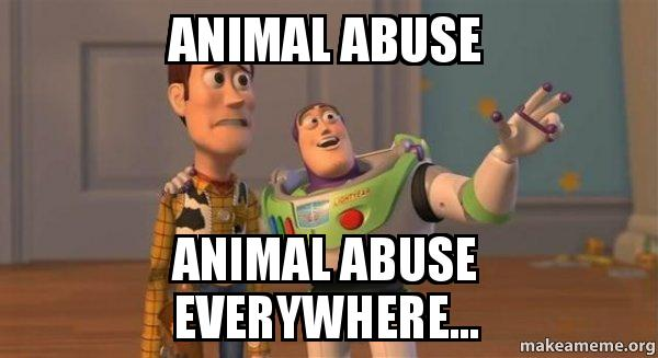 animal abuse animal abuse everywhere... - Buzz and Woody ...