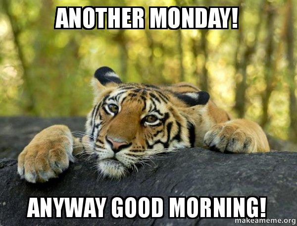 Image result for tiger monday
