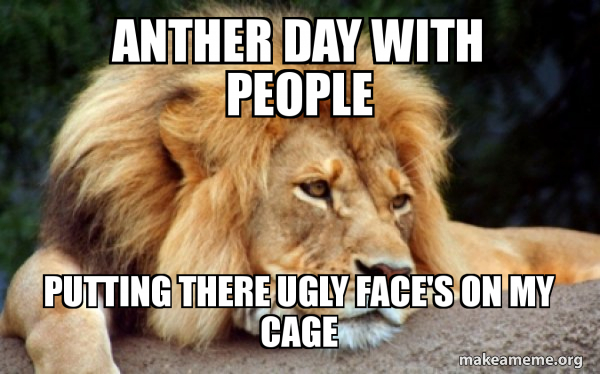 Anther Day With People Putting There Ugly Face S On My Cage Confession Lion Make A Meme