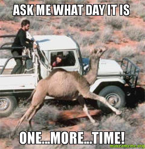 ask me what ask me what day it is one more time! make a meme