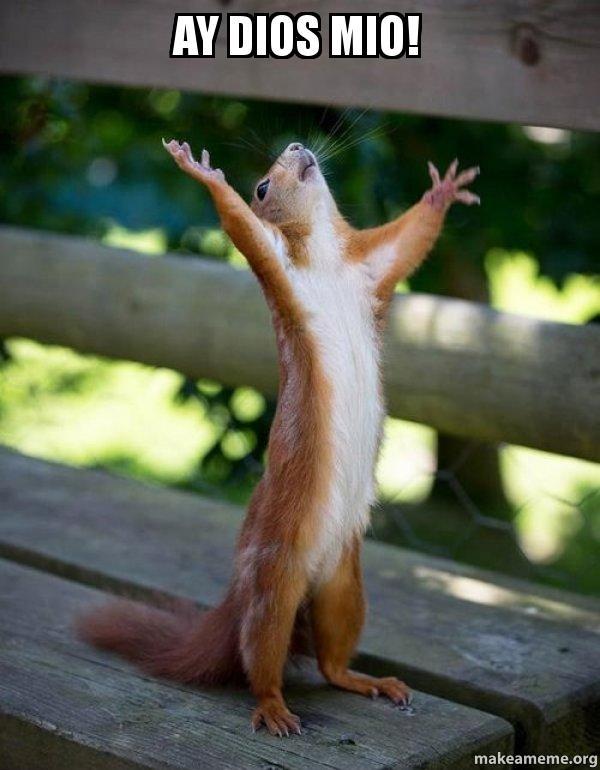 ay dios mio atsc2r ay dios mio! happy squirrel make a meme