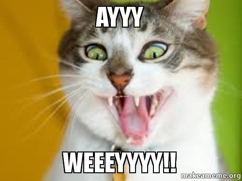 ayyy weeeyyyy ayyy weeeyyyy!! make a meme