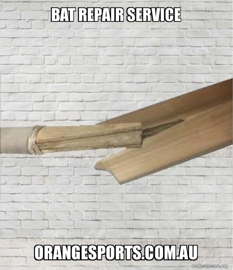 Bat Repair Service Orangesports Au