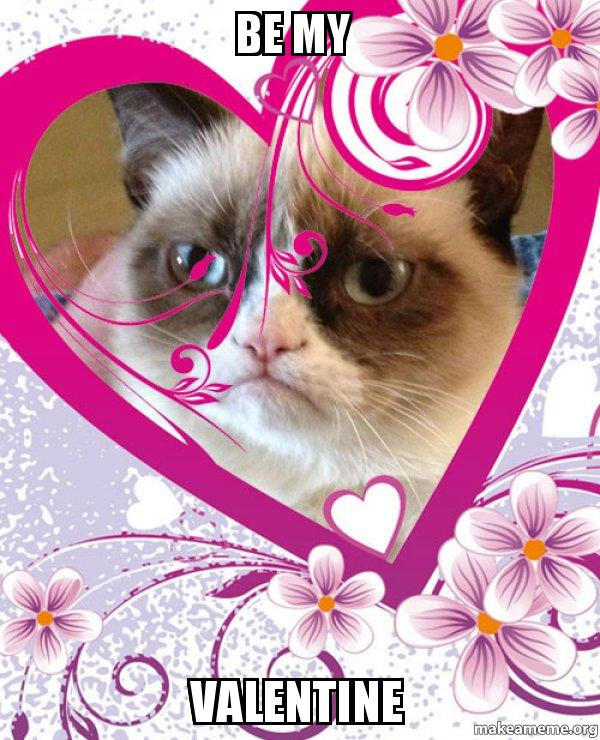Grumpy Cat Picture Of The Day
