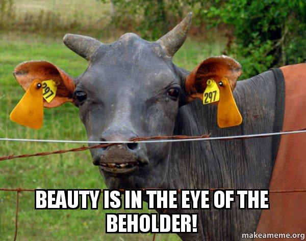 Beauty Is In The Eye Of The Beholder Hairless Cow