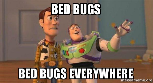 bed bugs bed bed bugs bed bugs everywhere buzz and woody (toy story) meme