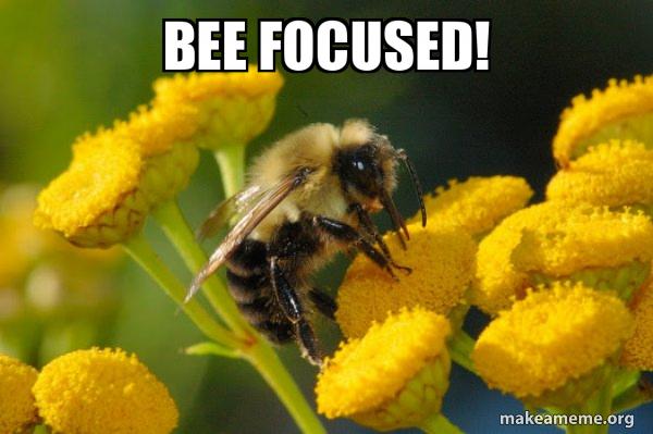 Good Guy Bee meme