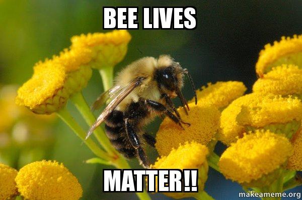 bee-lives-matter.jpg