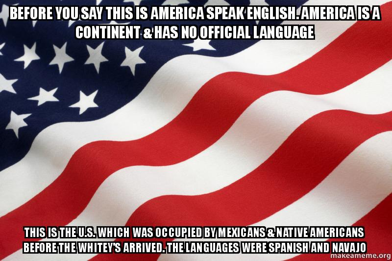 This Is America: BEFORE YOU SAY THIS IS AMERICA SPEAK ENGLISH. AMERICA IS A