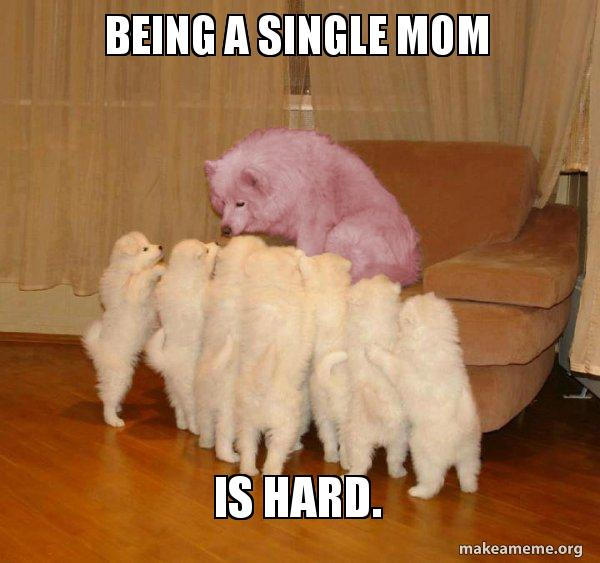 Being a single mom is hard  - Malicious Storytelling Dog | Make a Meme