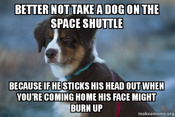 Better not take a dog on the space shuttle because if he