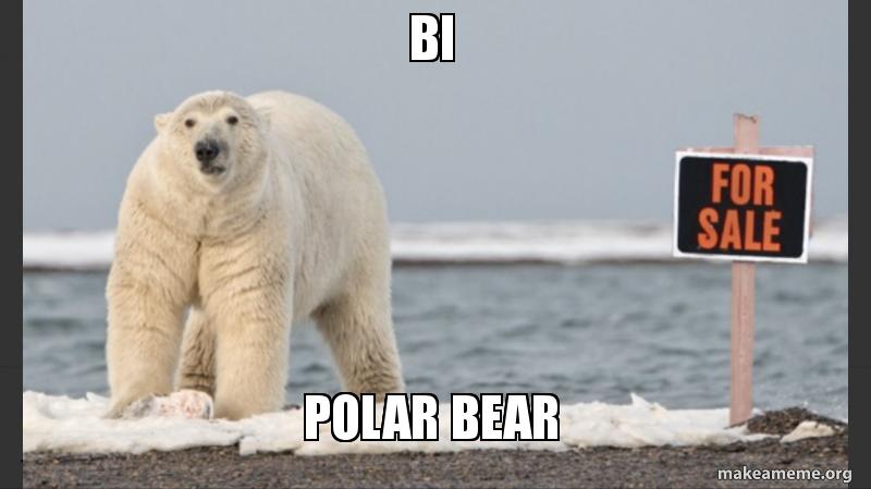 Bi Polar Bear Make A Meme