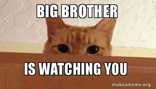 Big Brother Is Watching You Make A Meme