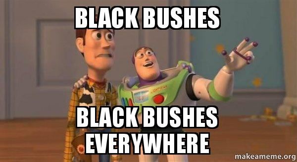 Buzz And Woody >> Black Bushes Black Bushes everywhere - Buzz and Woody (Toy ...