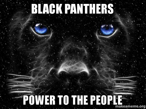 Black panthers power to the people make a meme
