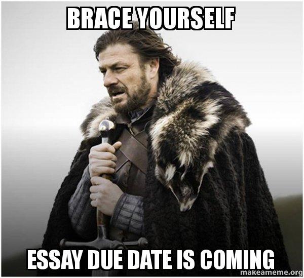 Image result for essay meme