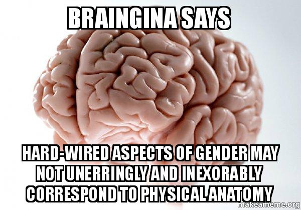 Braingina Says Hard Wired Aspects Of Gender May Not Unerringly And