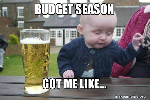 budget season got budget season got me like drunk baby make a meme