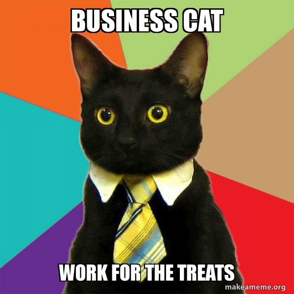 Business Cat meme