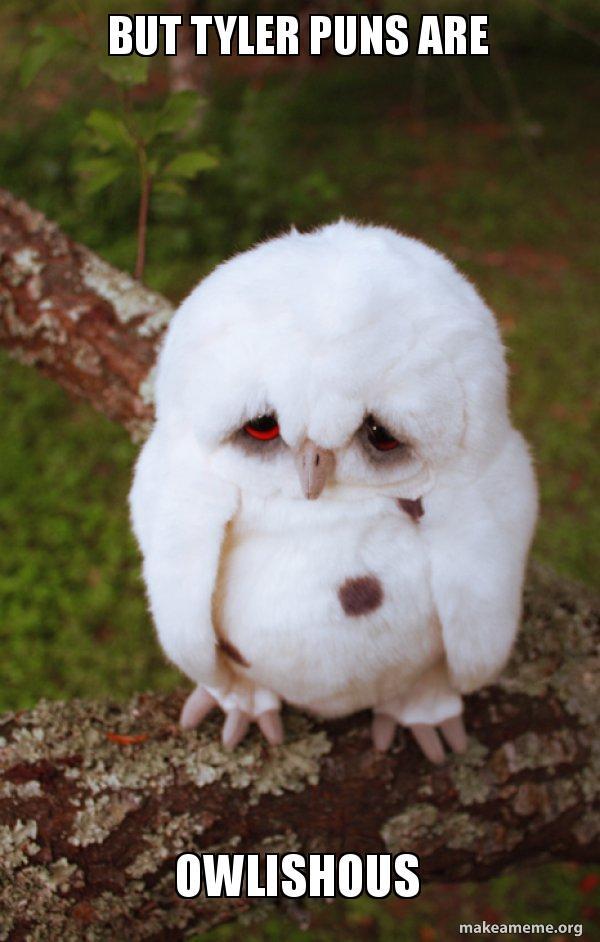 But Tyler Puns Are Owlishous Sad Owl Make A Meme