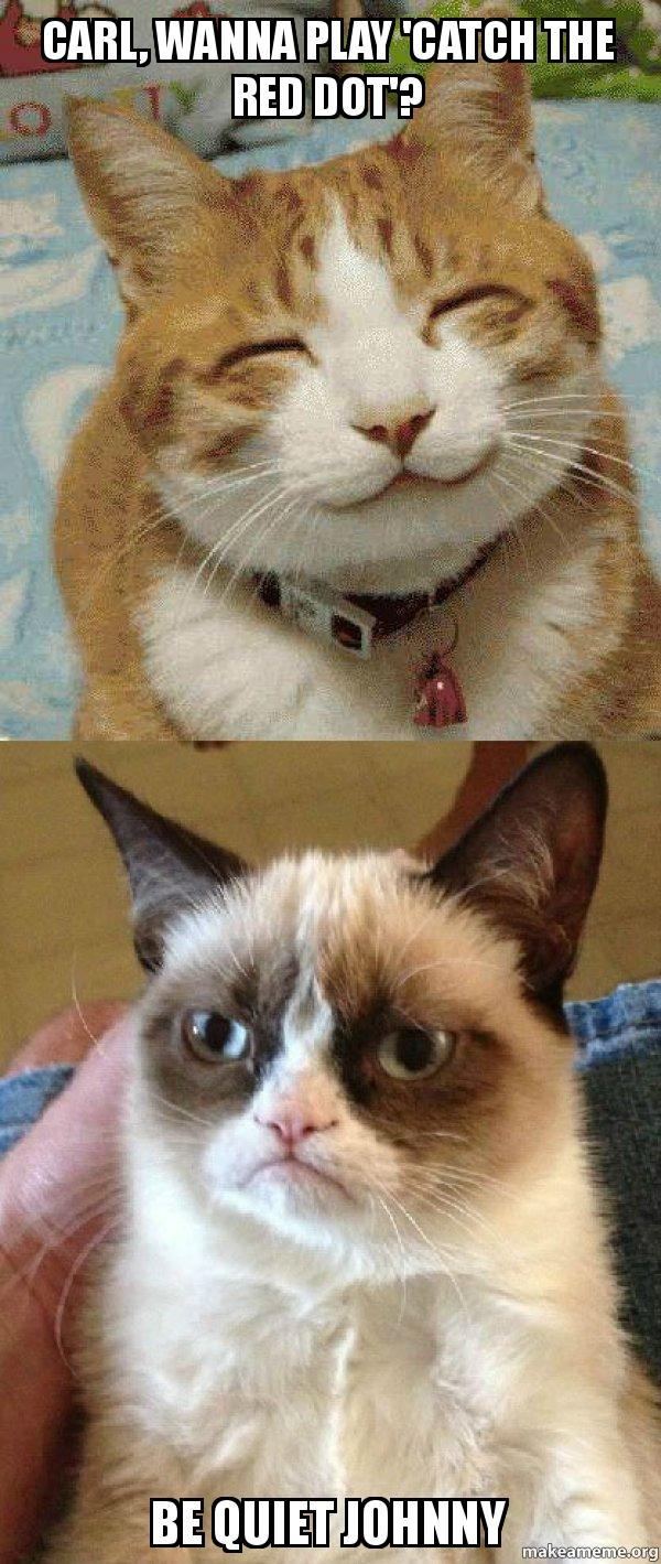 carl wanna play carl, wanna play 'catch the red dot'? be quiet johnny grumpy cat