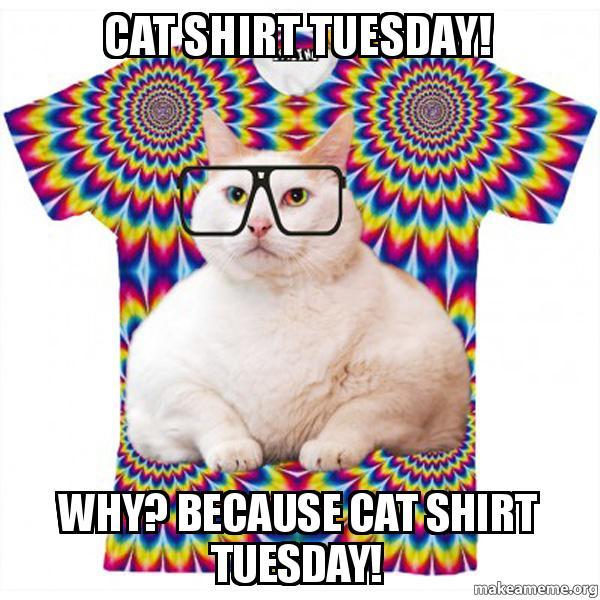 Make A Cat Shirt